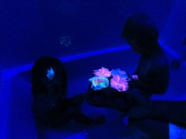 Glow in the Dark Bath Paint--a great indoor activity and so much fun for the kids!