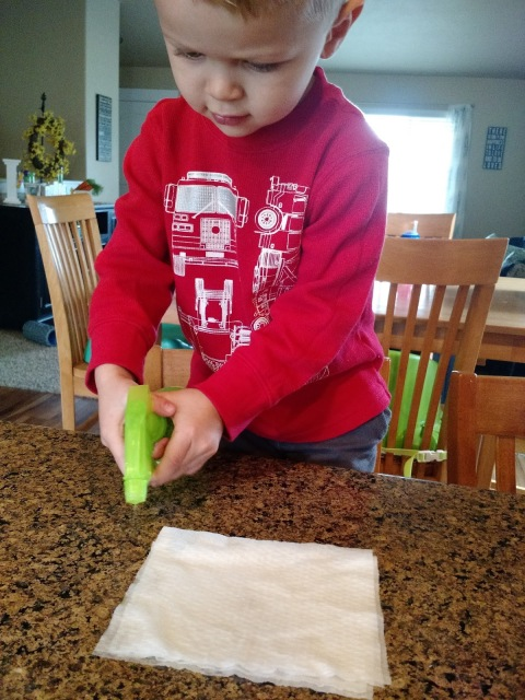 Kid Science: Growing Seeds In A Bag--Learn about how seeds grow!  A great activity to do at home with the kids or for a pre-K thru 1st grade lesson.
