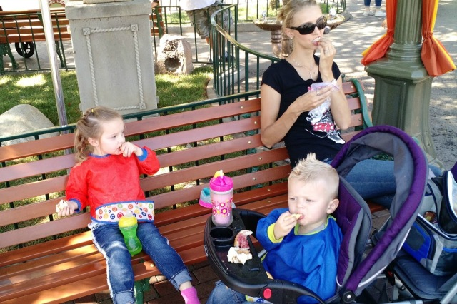 Disney parks allow you to bring outside food and drink in, but what should you take?  Click here for the ultimate list of snacks to pack for your next Disney trip.